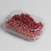 berries - palstic tray with lid